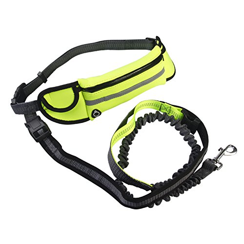 Longfit Retractable, Adjustable Heavy Duty Dog Leash, Harness And Collar Combo for Training and Walking dogs