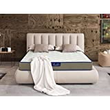 Luxurcozy 10 Inch Luxury Individually Wrapped Pocketed Encased Coil Spring Hybrid Memory Foam & Gel Memory Foam Mattress, QUEEN