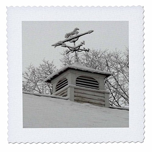 - 3dRose TDSwhite – Winter Seasonal Nature Photos - Rooftop Weathervane Winter Scene - 8x8 inch Quilt Square (qs_284882_3)