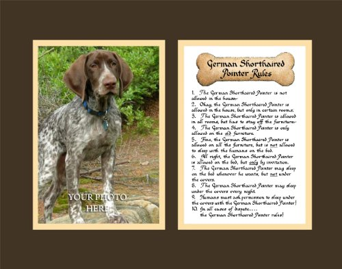 Dog Rules German Shorthaired Pointer Wall Decor Pet Saying Dog Saying