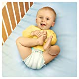Pampers Baby-Dry Nappies Monthly Saving Pack - Size 5, Pack of 144 Bild 3