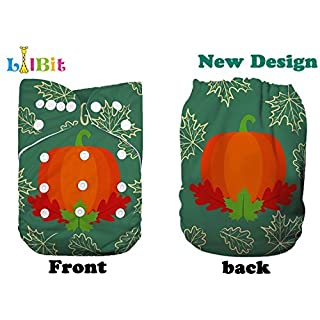 Lilbit Washable Reusable Thanksgiving Baby Cloth Diaper (TH01)