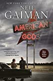 img - for American Gods: A Novel book / textbook / text book