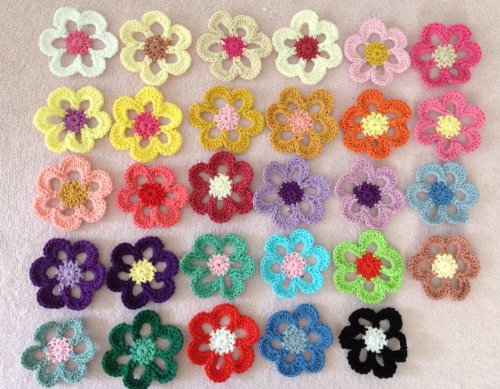27pc Assorted Six Petals 2.17