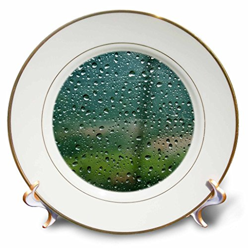 Danita Delimont - Germany - Rain on a cable car going up the mountains in the Bavarian Alps - 8 inch Porcelain Plate (cp_227356_1)