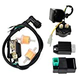HIAORS Ignition Coil 5 Pin CDI Regulator Rectifier Relay Fuel Filter For Kazuma Meerkat 50cc Falcon 90cc 110cc Taotao Roketa Coolster 110CC ATV 3050B X15 X 18 R Nitro X19 SSR 110cc Pocket Bike