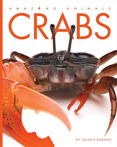 Amazing Animals: Crabs