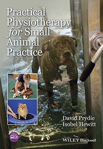 Practical Physiotherapy for Small Animal Practice [Prydie, David - Hewitt, Isobel] (Tapa Blanda)
