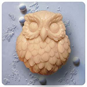 Amazon.com: Owl S0142 Craft Art Silicone Soap mold Craft Molds DIY