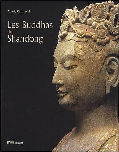 Download Les Buddhas du Shandong pdf, epub
