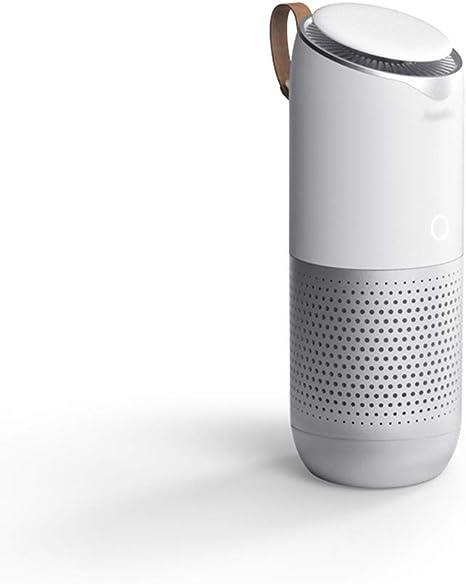 CAPE Purificador de Aire Coche Limpiador ionizador ambientador para Humo de Cigarrillos, alergias, bacterias con purificación, esterilización, Funciones de erradicación de Mosquitos: Amazon.es: Deportes y aire libre