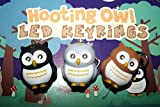 Danyoun Lovely Hooting Owl LED Torch Keyring, Fun Cute LED Key Chain with Light, Funny Cute Owl Novelty Sound Key Chain for Bags And Purses, Kids Girls Women lovely Decoration Key Chain (Random color)