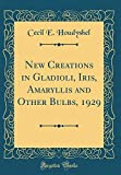 Amazon / Forgotten Books: New Creations in Gladioli, Iris, Amaryllis and Other Bulbs, 1929 Classic Reprint (Cecil E Houdyshel)