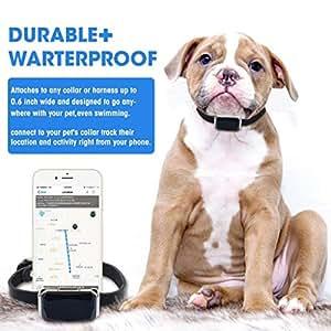 Amazon.com: Registro GPS para mascotas, ajustable para ...
