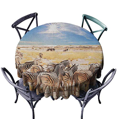G Idle Sky Africa Decorative Textured Fabric Tablecloth Zebras in Savannah Desert Waterhole on Hot Day Africa Safari Adventure Land Print Great for Buffet Table D39 Multicolor (Best Bbq Savannah Georgia)