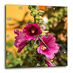 3dRose Alexis Photography - Flowers Malva Mallow - Three Purple Malva, Mallow, malvaceae, Flowers, Green, Orange Colors - 13x13 Wall Clock (DPP_319941_2)