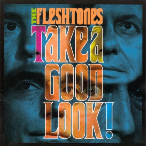 The Fleshtones-Take A Good Look-CD-FLAC-2007-FATHEAD Download
