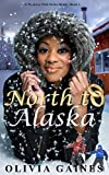 North to Alaska (Modern Mail Order Bride Book 1)