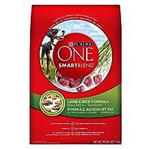 Purina ONE® SmartBlend® Lamb & Rice Formula Dog Food 14kg Bag
