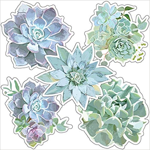 Simply Stylish Succulents Cut-Outs