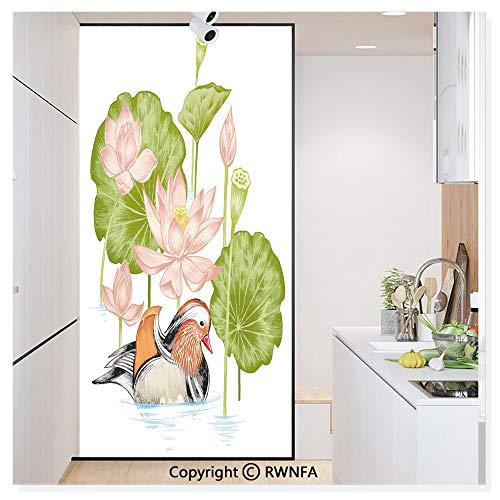 - RWN Film Window Films Privacy Glass Sticker Baby Mandarin Duckling in Pond with Lotus Lily Flowers Water Painting Style Static Decorative Heat Control Anti UV 30In by 59.8In,White Green and Pink