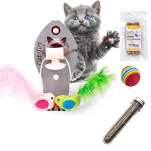Afuby Wall Playing Catnip Toys Silvervine Cat Catnip Sticks Cat Feather Toys Cat Rainbow Ball 14.2