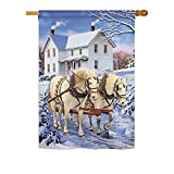 Ornament Collection H191064-BO Winter Horses Winter Winter Wonderland Impressions Decorative Vertical 28″ x 40″ Double Sided House Flag Printed in USA Multi-Color
