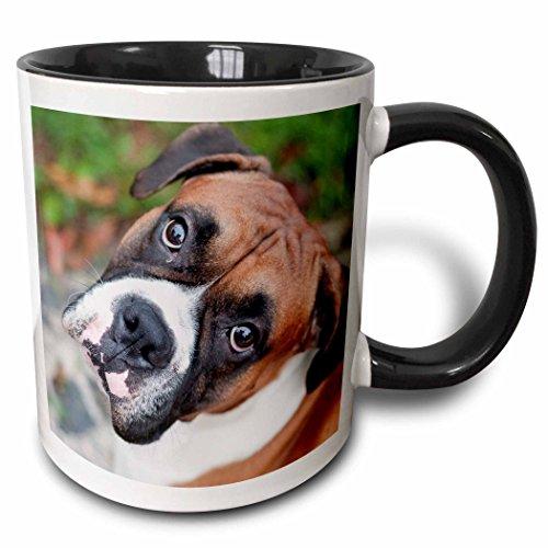 3dRose Carsten Reisinger Photography mug 155019 4