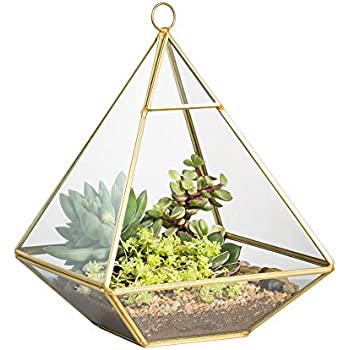 Copper Pyramid Vertical Metal Glass Geometric Wall Hanging Terrarium Brass Tabletop Succulent Air Plants Holder Planter Fern Moss Display Boxes Vase Pot 5.9 x 5.9 x 7.87 inches Gold