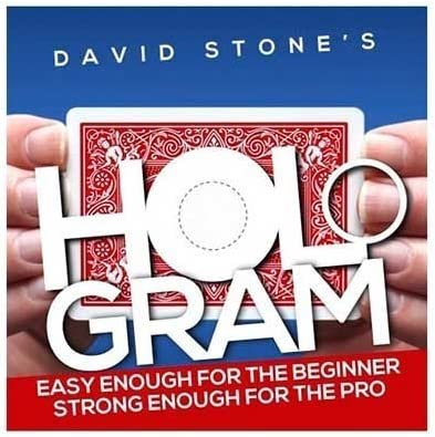 Image result for hologram by david stone