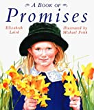 A Book of Promises, Elizabeth Laird, 0789425475