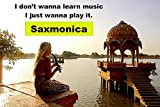 Sax on the go, Saxophone/Harmonica hybrid