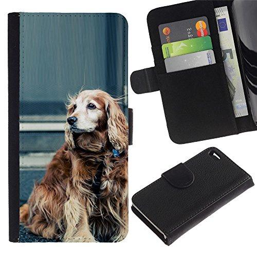 LASTONE PHONE CASE / Luxe Cuir Portefeuille Housse Fente pour Carte Coque Flip Étui de Protection pour Apple Iphone 4 / 4S / Cocker Spaniel Field Water Dog Springer