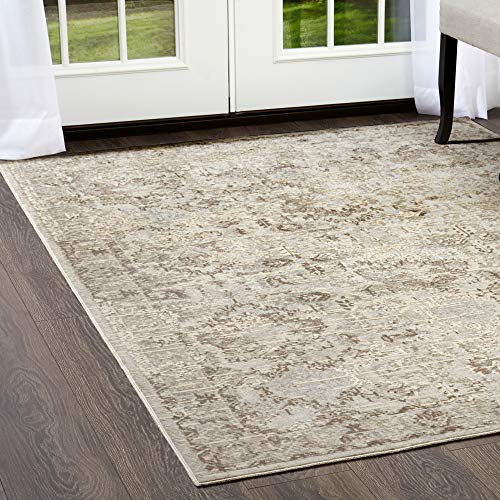 Home Dynamix Shabby Chic Pastel Palma Area Rug, Cotton Blend  7'10