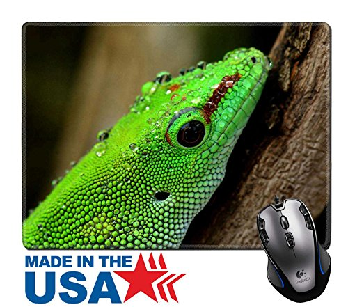 """MSD Natural Rubber Mouse Pad/Mat with Stitched Edges 9.8"""" x 7.9"""" Madagascar day gecko 36669962 Customized Desktop Laptop Gaming Mouse Pad"""