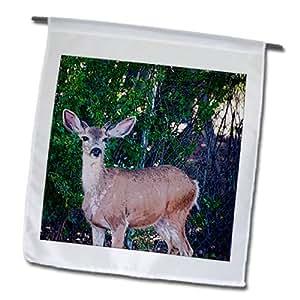 Jos Fauxtographee Realistic - A Little Buck Deer in a Yard Near a Fence in Pine Valley Utah Posturized - 12 x 18 inch Garden Flag (fl_57310_1)