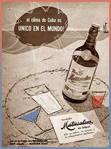Rum Matusalem - 17