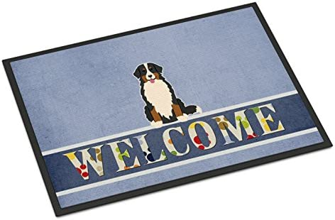 Caroline s Treasures SS4896MAT Bulldog English Wipe Your Paws Indoor or Outdoor Mat 18×27, 18H X 27W, Multicolor