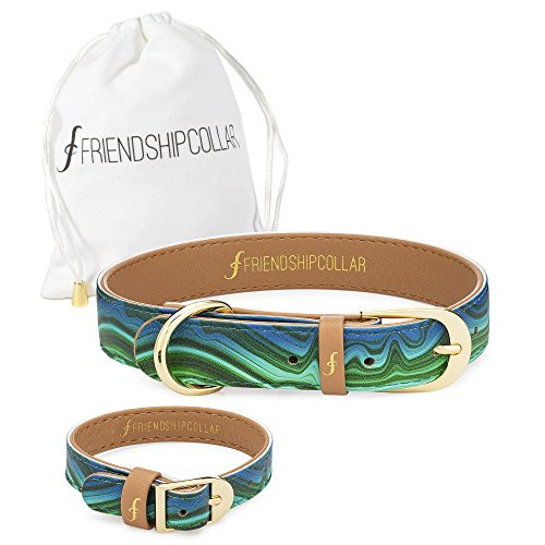 FriendshipCollar Dog Collar and Friendship Bracelet - Magical Malachite - Medium