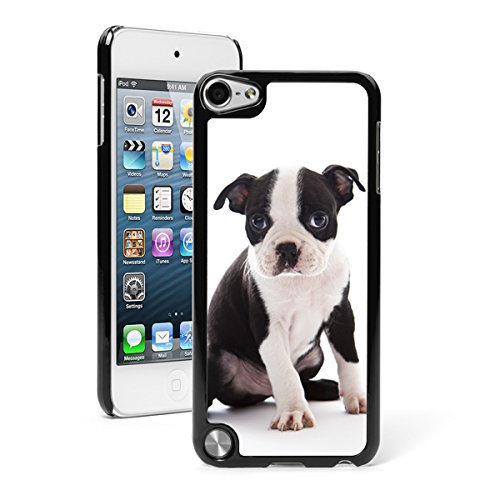 For Apple iPod Touch 5th / 6th Generation Hard Back Case Cover Boston Terrier Puppy (Black) ()