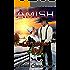 Amish Christmas Joy: Inspirational Clean Amish Romance