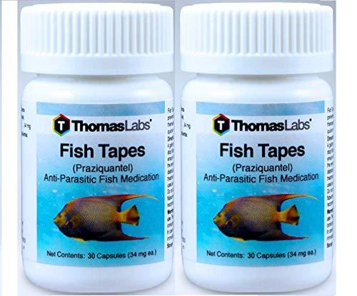 thomas labs fish - 9
