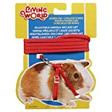 Living World Figure 8 Harness and Lead Set for Guinea Pigs, Red-1.2 Meter (4 Feet)
