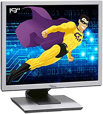 Fujitsu - Pantalla para ordenador (19 pulgadas, B19-3, ScenicView S26361-K1143-V150, LCD TFT TN, VGA, DVI-D 5:4): Amazon.es: Electrónica