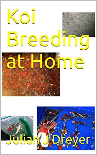 Breeding Koi (Koi Breeding at Home)