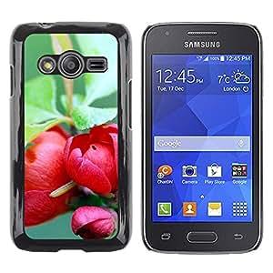 Be Good Phone Accessory // Dura Cáscara cubierta Protectora Caso Carcasa Funda de Protección para Samsung Galaxy Ace 4 G313 SM-G313F // Plant Nature Forrest Flower 73