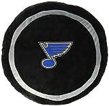 NHL St. Louis Blues 3D Sports