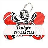 NCAA Wisconsin Badgers Custom Pet ID Tag with