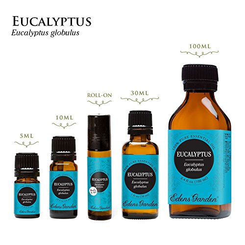 Eucalyptus Globulus 100% Pure Therapeutic Grade Essential Oil by Edens Garden