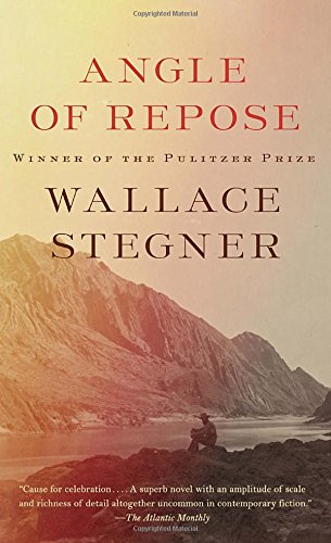 Book cover for Angle of Repose